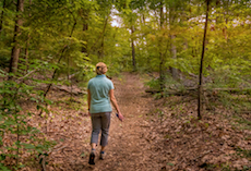 hiker on the wooded trail at Bergstrom, Boxford