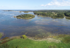 Aerial photo of Cox Reservation, king tide
