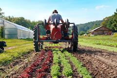 Finding Farmland, tractor, farming
