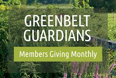 Greenbelt Guardian logo