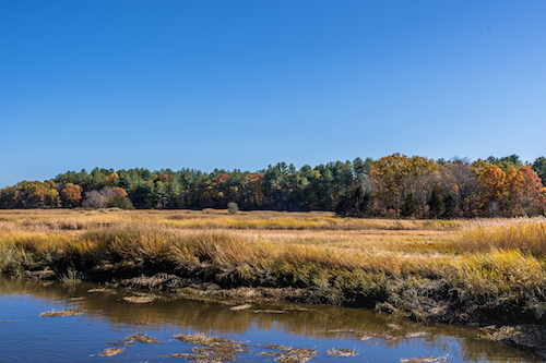Parker River with fall foliage along the shore
