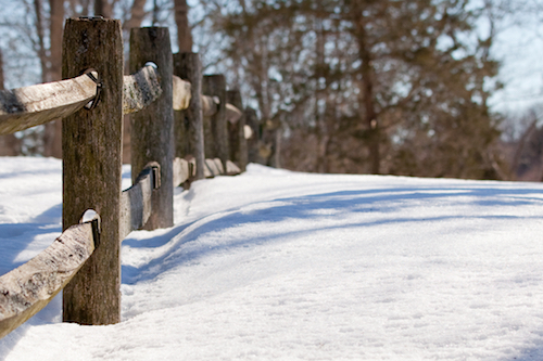 view along wooden fenceline in snow at Cox Reservation
