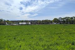 farmland in Peabody