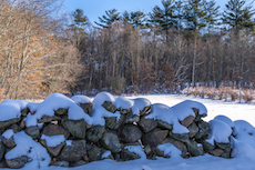 snowy stone wall at Vineyard Hill Reservation