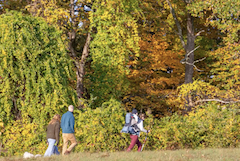 Walkers in the fall at Indian Hill Conservation Area