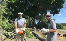 Stewardship crew wearing donated gloves from IFS doing tree